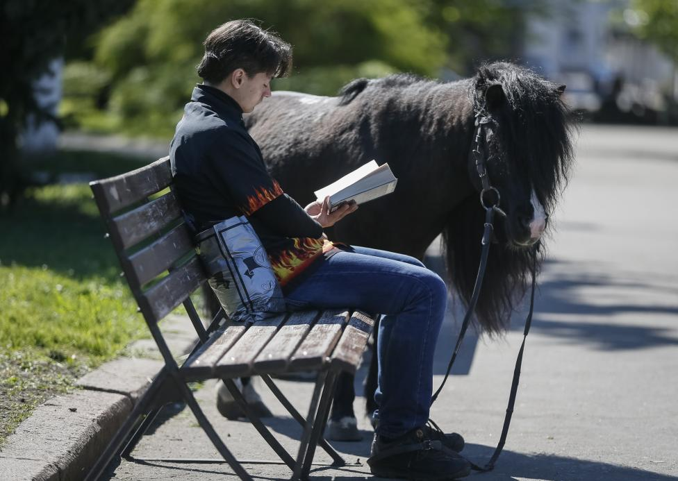A man reads a book as his pony waits nearby, in central of Slaviansk